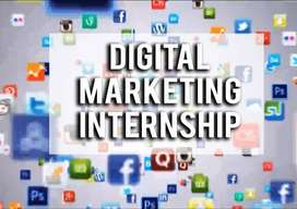 Internship to Become a Digital Marketer