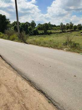 LOW BUDGET LAND FOR SALE