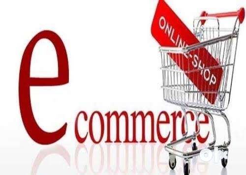 Ecommerce Website ₹11,999 Domain 0