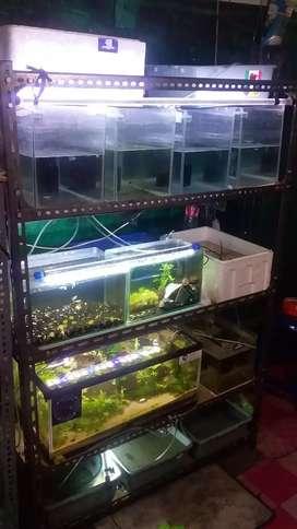 Rak besi aquarium adaptor filter lampu