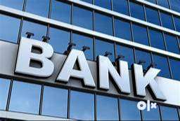 Required Accountant Profile  In Bank 0