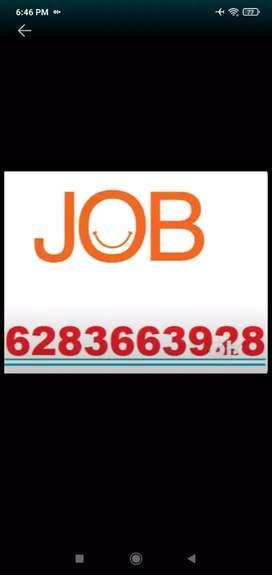 Female staff required in tricity chandigarh