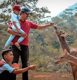 Kavling Jalur Wisata Bukit Waruwangi