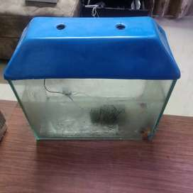 Fish aquarium available for sale