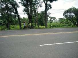 Tanah Strategis Pinggir Jalan Nasional