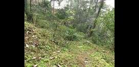 Roadside Commertial land