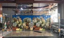 Baru aquarium 100x45x40 background