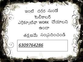 Do you want to earn money, work from home