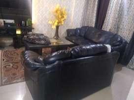 Black z Rexine sofa