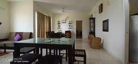 3 bhk full furnished flat for rent in thrikkakara seport road