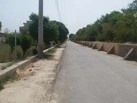 19 kanal Land for sale Society
