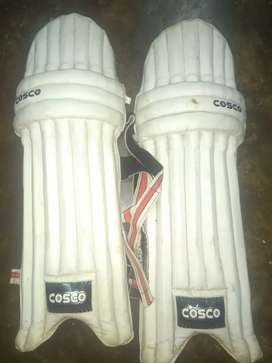 Cricket pad in low price
