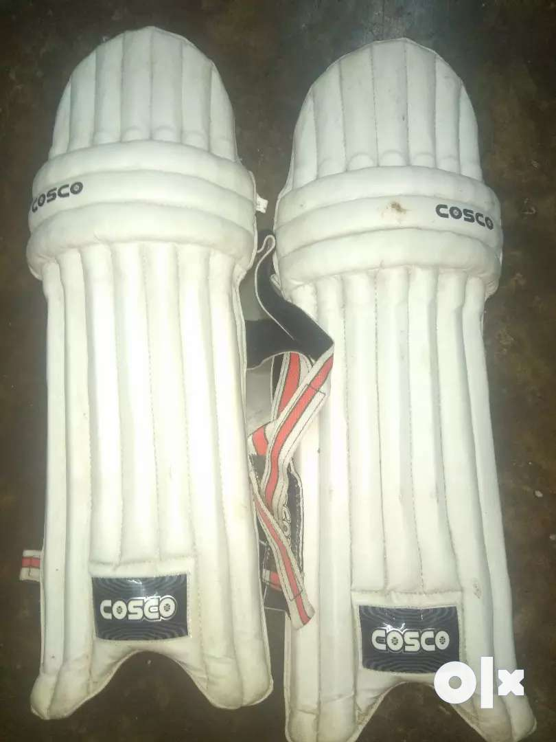 Cricket pad in low price 0