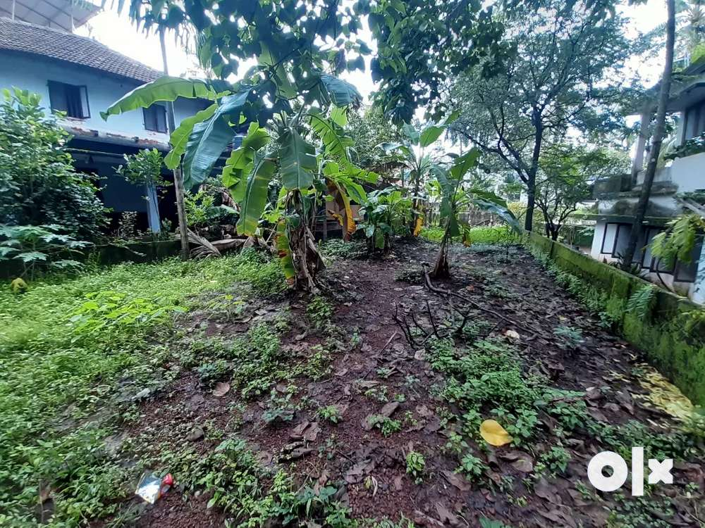 land near new bustand kannur