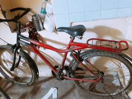 Heavy bicycle