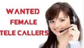 Female Tele callers in Dilshuk nagar.