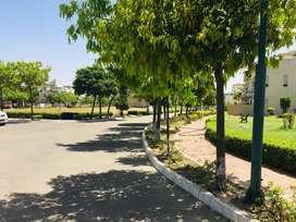 Approved Plots for sale near chandigarh , zirakpur ,panchkula ,mohali