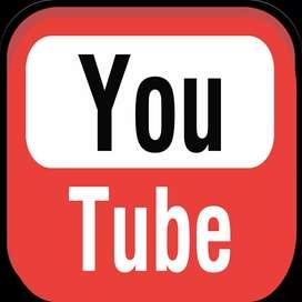 Need professional video editor