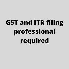 GST and ITR filing professional required
