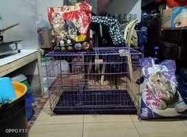 Kandang kucing besar dan tas gendong kucing