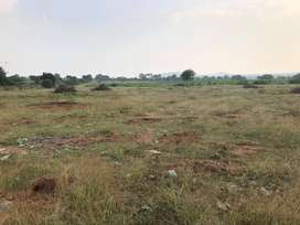 5 Acers Agriculture land for sale at Nallavelli vilage yacharam mandal
