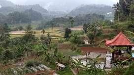 Tanah Daerah Dingin Kawasan Villa Dijual Murah di Wanayasa Purwakarta