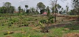 1 acre property near MC Road
