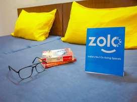 Zolo Sun N Sand 1 2 sharing pg for unisex
