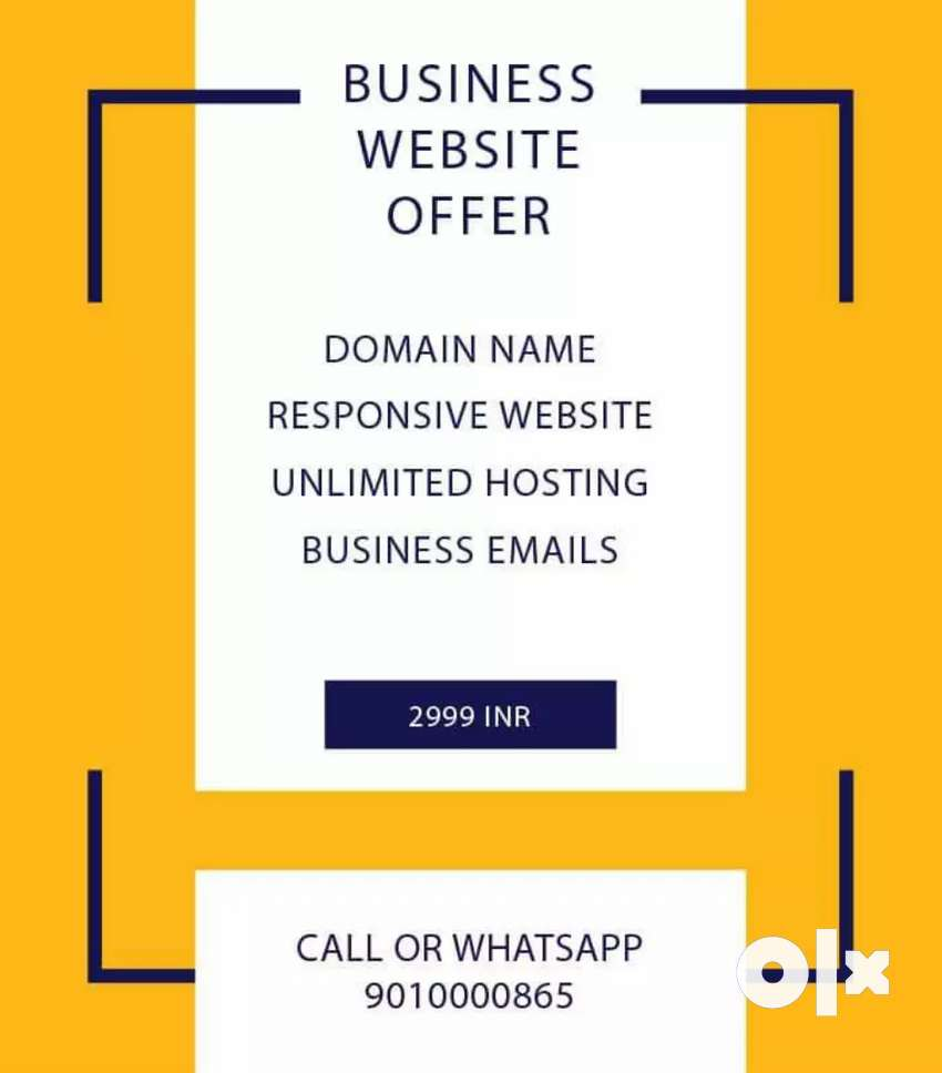 Get Business Online with Professional Website 0