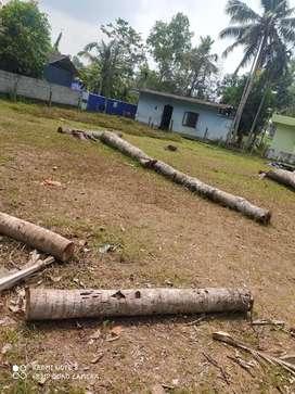 Land available for sale in ambalapuzha area karoor ward