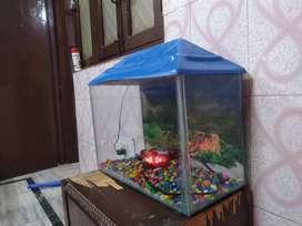 Fish Tank New Condition