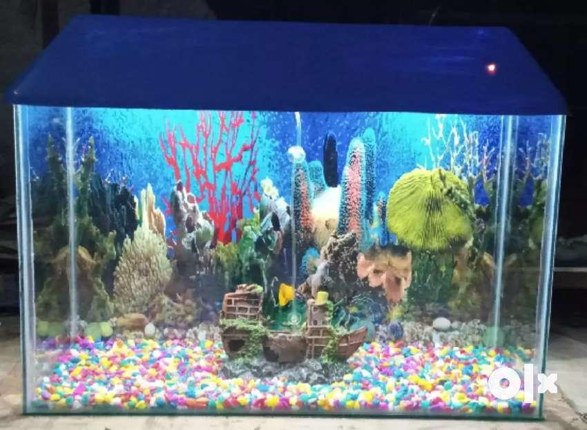 2.5ft aquarium for sale 0