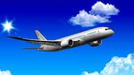 Different kinds of Airlines Jobs boost and much more should be provide
