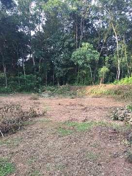 House plot for sale in Kodungoor, Vazhoor