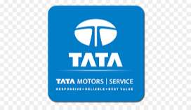 Hiring for TATA MOTOR experience & fresher candidate office work for m