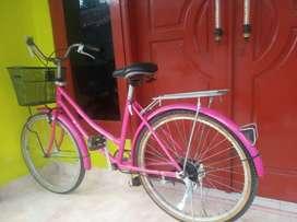 Sepeda keranjang Phoenix uk. 26