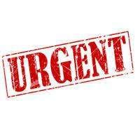 we are hiring ticketing executive / ground staff