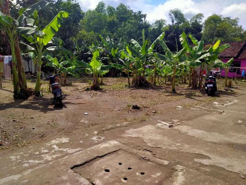 Tanah Murah Pleret Bantul Yogyakarta