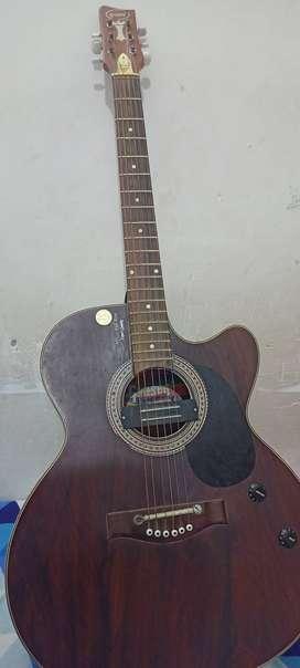 Grason semi acoustic/semi electric guitar