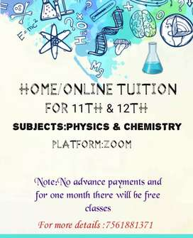 Home/Online tuition