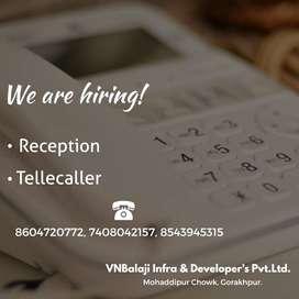 Tellecaller and reception