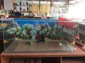 Jual aquarium 100x45x45 + background