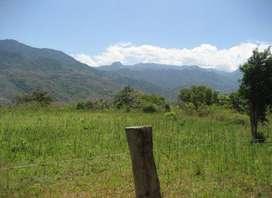 Land Sale for Resort 70 Nalis @ Rs 1.50 Lacs Near Chamba, Uttarakhand