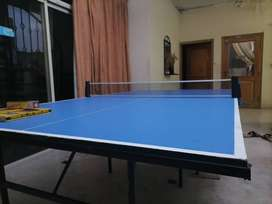 Brand New Table Tennis