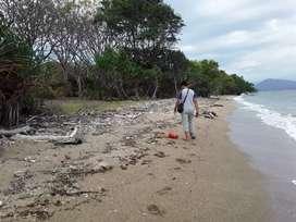 Tanah pinggir pantai pulau moyo 4 ha dijual  rp. 500 jt per ha