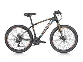 Roadeo and Fantom Bicycles