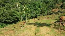 5 acres of land sale for farm and resort Attappadi, Palakkad