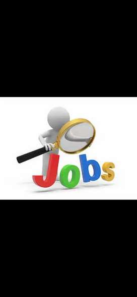 Fresher candidate call now for bulk hirings