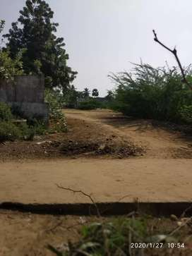 Total 20cent plot ,MANDAVALLI, 2 sides road  1 is easy,2 is west,,