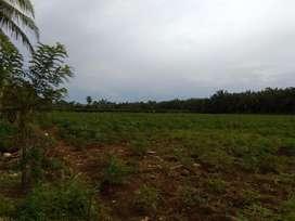 Dijual tanah seluas 12.735 m2